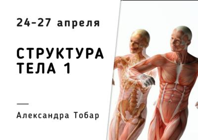 NK/ Голограмма структуры тела 1/ Alexandra Tobar