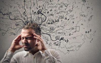 О стрессе , мозге, теле и о том, «как жить дальше?» :)